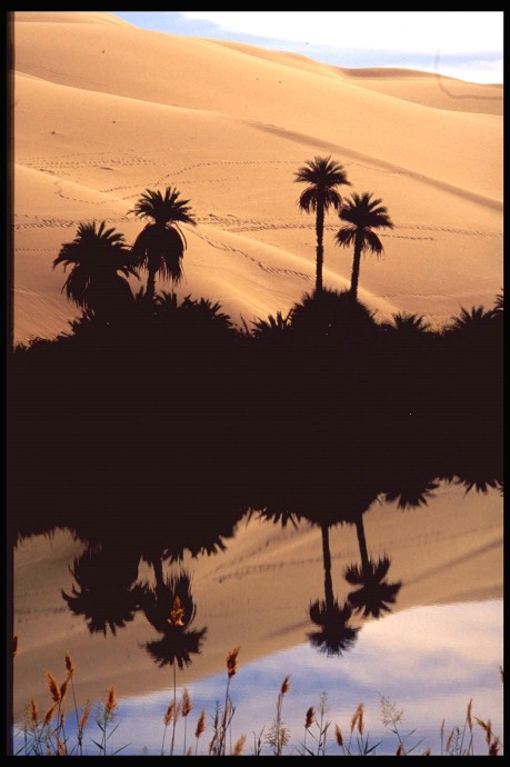 Lybia, the desert